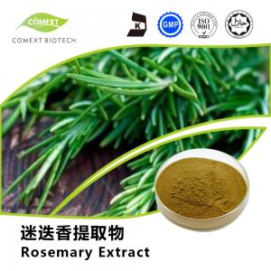 China Hot Sale Rosemary Leaf Extract Carnosic Acid 5%~80% HPLC Testing on sale
