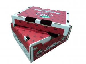 China practical corrugated carton box in shanghai on sale
