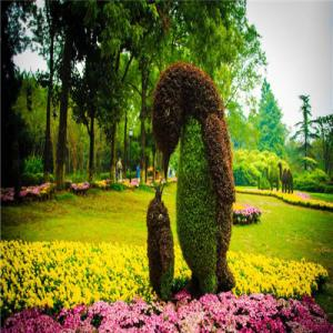 China Artificial Plant Sculpture on sale