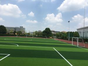 China Artificial Lawn Of Football Field Without Filling  , Excellent Wear Resistance , Long Using Life , Beautiful Color on sale