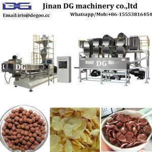 China European Tehnology Shandong DG China Corn flakes making machine manufacturer hot sales price on sale