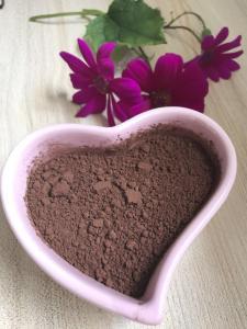China Raw Natural Organic Cocoa Powder No Sugar High Grade For Baking Product supplier