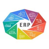 China Various Business ERP System / Enterprise Resource Planning Software Network Type on sale