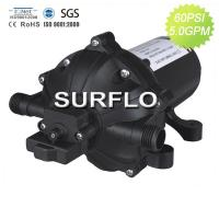 China High Pressure Diaphragm water pump 12 24 volt dc for marine RV Agriculture and washer on sale