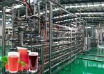 Highly Automation Fruit Processing Line Beverage Production Line 20T / Day Capacity