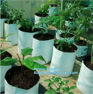 China Drain Growing Bags-White Color Grow Bags-100%Virgin Raw PE Planter Bags -25Gallon 150Microns Thickness Planting Bag, PAC on sale