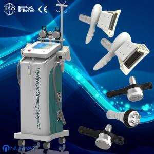 China Fat Freezing fat removal weight loss cryolipolysis slimming machine skin cosmetics salons on sale