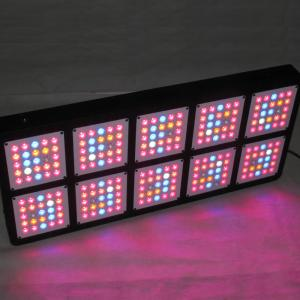 China ForestGrower Full Spectrum1250W 12bands indoor grow lights Exclusive 5W Grow LED chip For Indoor Plant Hydroponic System on sale