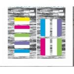 Abas de suspensão autoadesivas plásticas do índice da pasta de arquivos do filme esparadrapo portátil do ANIMAL DE ESTIMAÇÃO de 25*45 milímetro