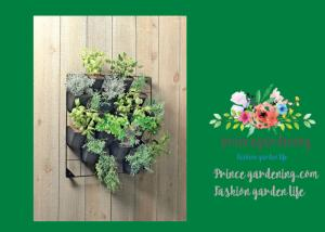 China Indoor Hanging Flower Baskets , Versatile Wall Hanging Baskets on sale