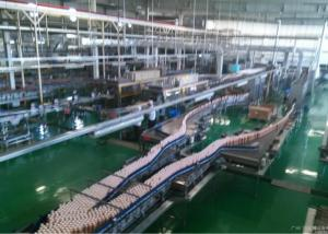 China Custom Beverage Production Line Packing / Conveyor Systems For Can / Bottle / Cup on sale