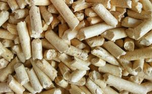 China Natural Pine Wood Cat Litter on sale