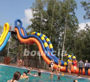 China Giant Inflatable Water Slide With Durable 0.9 mm PVC Tarpaulin on sale