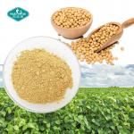 100% Natural Women Health Soybean Extract 40% Soy Isoflavone with Daidzein 15% for Menopausal Osteoporosis