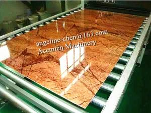 China ポリ塩化ビニール模造人工的な石造りの大理石板壁パネル/壁シートの生産ライン on sale