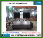 版(モデルPDシリーズ)のためのCNCのガントリー タイプ鋭い機械