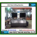Tipo máquina do pórtico do CNC de perfuração para a placa (séries modelo do paládio)