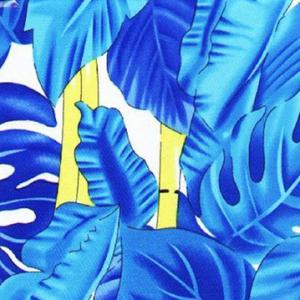 China Spandex Swimwear Fabric/Lycra Knitted Fabric on sale