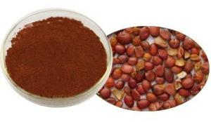 China Natural Wild jujube powder extract Jujuboside A and Jujuboside B and Red jujube powder From Gmp Manufacturer on sale
