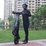 12'' Folding Electric Bike Aluminum Alloy Body 36 V 250 W Removable Battery
