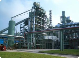 China Waste Wood Biomass Energy Plant Low Maintenance Less Interfaces on sale