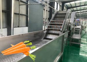 China Fruit And Vegetable Processing Equipment Carrot Processing Plant Energy Saving on sale