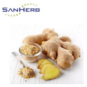 China Water Soluble Ginger Root Extract Powder Gingerol 1% - 20% From Supercritical CO2 on sale