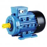 MS Series 4 Pole  3 Phase Induction Motor Electric 10HP 7.5KW  WEG Type