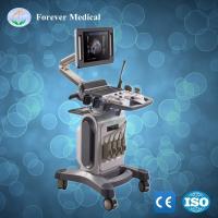 Digital Portable 4D Color Doppler Ultrasound
