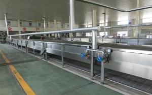 China Automatic PLC Control Industrial Vermicelli Noodle Manufacturer on sale