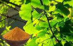 100% Natural Ginkgo Extract With Advanced Extraction Technology