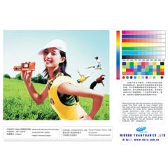 China high quality polyeater art canvas for indoor decoration on sale