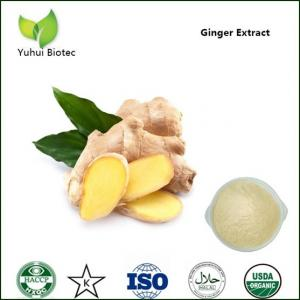China gingerol 5%,ginger powder extract,ginger dry extract,ginger rhizome extract powder on sale