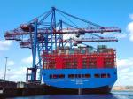 DDU China Ocean Shipping Agency , International Freight Container Shipping