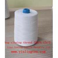 China 10s 12s/4 20/6 bag closing thread for pp bag on sale