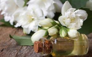 China 100% natural and unadulterated Jasmine Oil,jasmine flower oil, Distilled Jasmine Essential Oil on sale