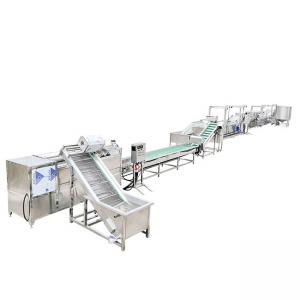 China OEM Corn Fruit Wheat Potato Chips Production Line 100kg/H To 1500kg/H on sale