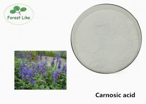 China Carnosic Acid 90% Rosemary Extract Powder Pharm Grade For Natural Antioxidant on sale