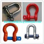 Stainless steel shackle&Roller Shackle,D-Shackle shackle