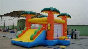 China Backyard Water Slide Bounce House , Popular Inflatable Castle Bounce House on sale