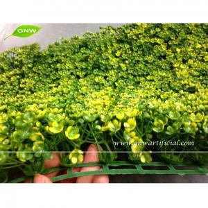 China GNW BOX021 Outdoor Plastic Boxwood Plants Artificial Grass Mat Garden Landscaping on sale