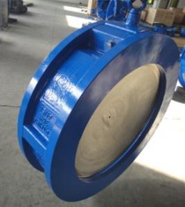 China ANSI wafer check valve on sale
