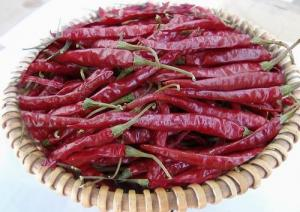 China dried red yunnan chili on sale
