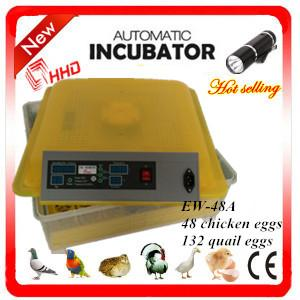 China Newest EW-48A automatic high quality chicken incubator / mini quail egg incubator high hatching rate on sale