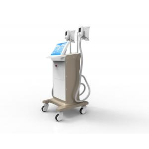 China Professional Fat freeze Slimming machine non invasive liposuction before and after photos on sale