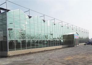 China Modern Design Agricultural Glass Greenhouse 3m - 6m Side Height Long Service Life on sale