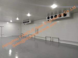 China Blast Freezer Cold Room Fishing Equipment , Cold Storage Walk In Cooler And Freezer on sale