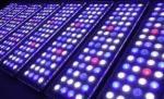 China 8L Nano Cube Rimless Compact Elegant Fish Tank Aquariums With 12V DC Bottom LED Lamp wholesale