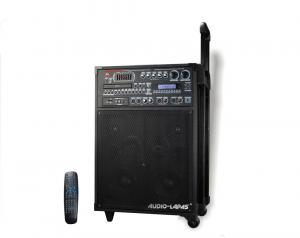 China 250w Portable UHF Wireless Microphone PA Speaker System on sale