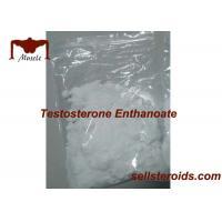 USP Test E Bodybuilding Prohormones Powder 315-37-7 Testosterone Enthanoate 99%